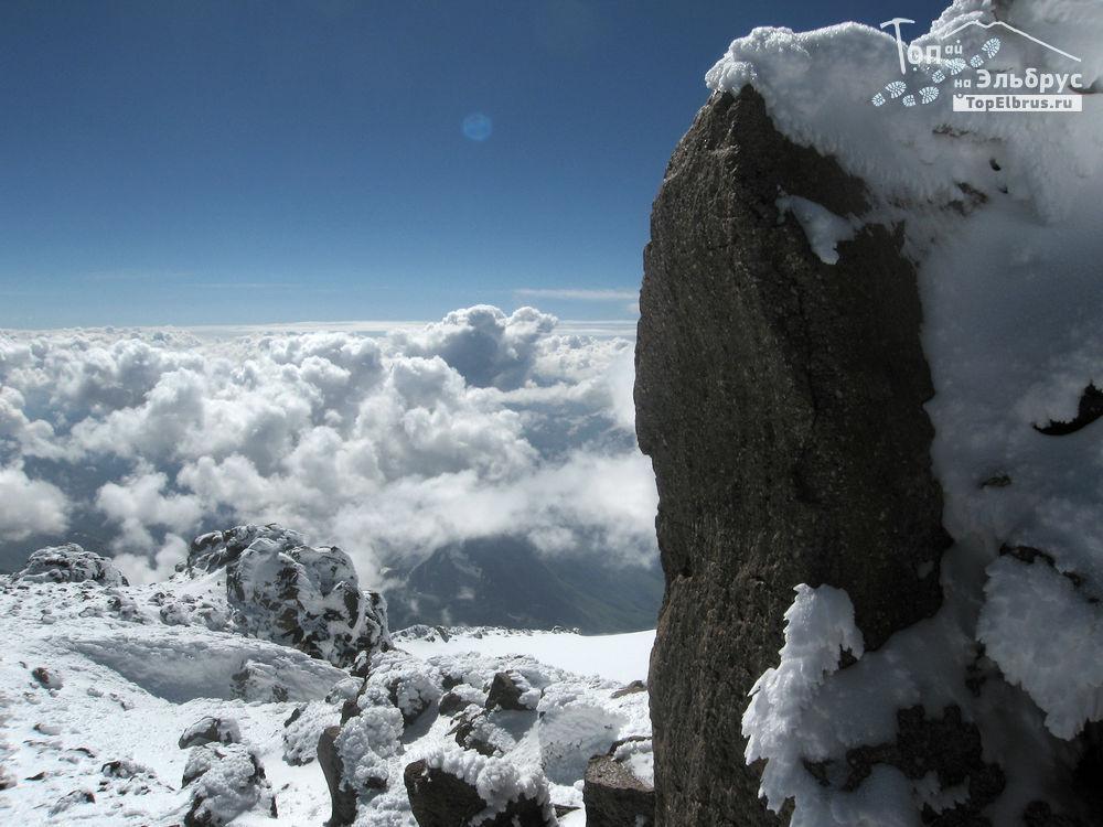 Слон на вершине Эльбруса
